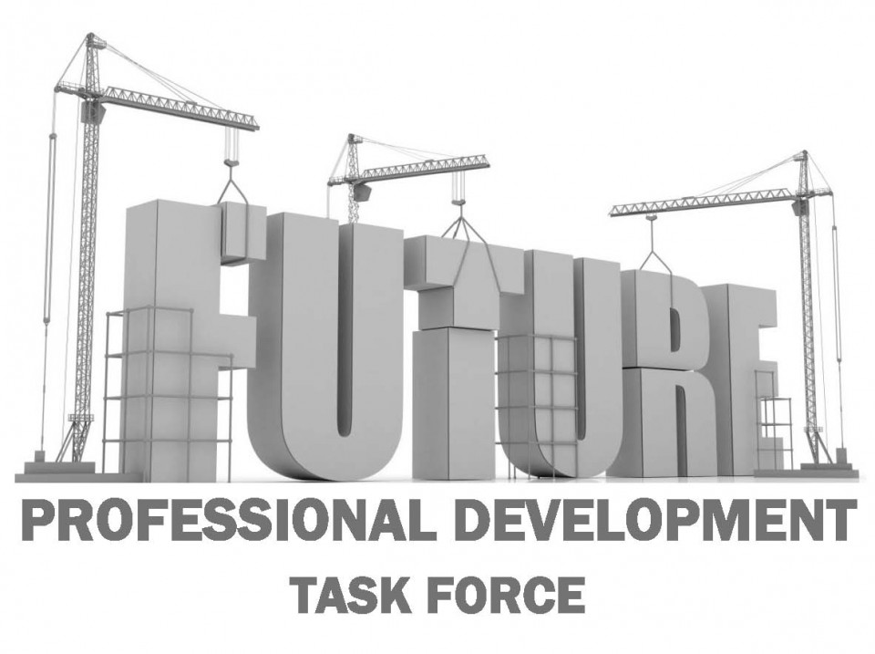 Performance Development Task Force